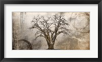 Framed Cottonwood Tree Part 7