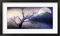 Framed Cottonwood Tree Part 11