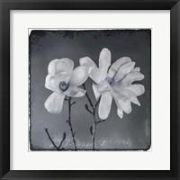 Framed Blue Magnolia 3