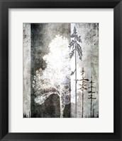 Framed July Tree 2