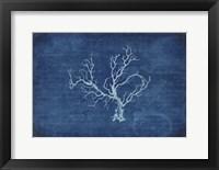 Framed Gypsy Blue Cyanotype V1