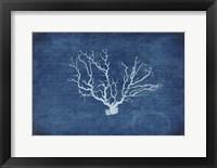Framed Gypsy Blue Cyanotype V3