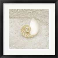 Framed Gypsy Sea Life 1