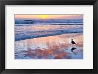 Framed Venice Beach Sunset