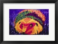 Framed Colorful Hedgehog
