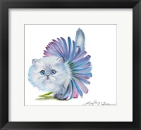 Framed Kitten Ballerina Daisy Flower Stare Persian Cat
