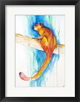 Framed Giant Red Flying Squirrel (Habitat)