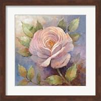 Framed Roses on Blue IV Crop