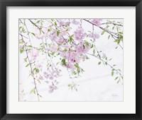 Framed Spring Branches II
