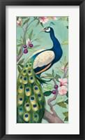 Framed Pretty Peacock II