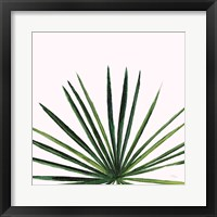 Framed Statement Palms III