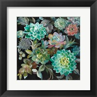 Framed Floral Succulents