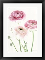 Framed Light and Bright Floral VI