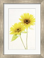 Framed Light and Bright Floral VII