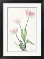Framed Light and Bright Floral I