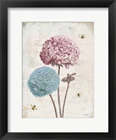 Framed Geranium Study II Pink Flower