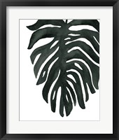 Tropical Palm II BW Framed Print