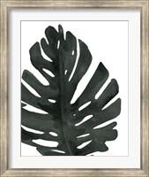 Framed Tropical Palm I BW