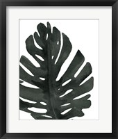Tropical Palm I BW Framed Print