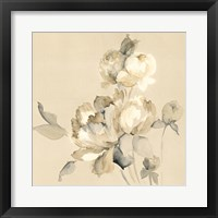 Framed Peony Blossoms Crop