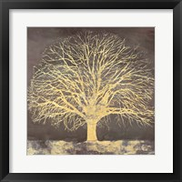 Framed Golden Oak