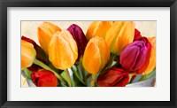 Framed Colorscape I