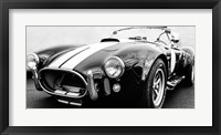 Framed Black Cobra