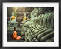 Framed Young Buddhist Monk praying, Thailand