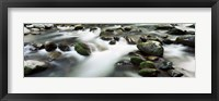 Framed Rocks in Little Pigeon River, Great Smoky Mountains National Park, Tennessee