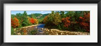 Framed River flowing through a Forest, Swift River, White Mountain National Forest, New Hampshire