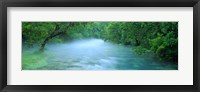 Framed Creek flowing through a Forest, Ozark National Scenic Riverways, Ozark Mountains, Missouri