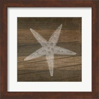 Framed Rustic Starfish - White