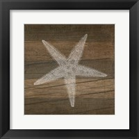 Framed Rustic Starfish - White