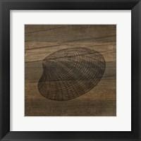 Framed Rustic Shell