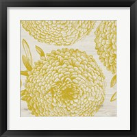 Framed Golden Dahlias II