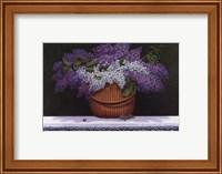 Framed Lilacs of Nantucket