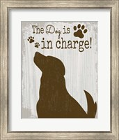Framed Dog is in Charge