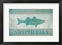 Framed Striped Bass