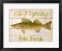 Framed Pike Perch