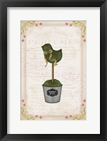 Framed Topiary Chick