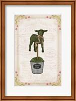 Framed Topiary Lamb