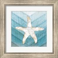 Framed Coastal Starfish