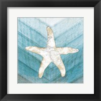 Framed Coastal Starfish