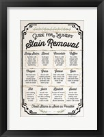 Framed Stain Removal Guide