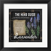 Framed Herb Guide Lavender