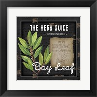 Herb Guide Bay Leaf Framed Print