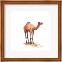 Framed Camel I