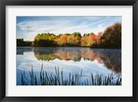 Framed Grist Millpond