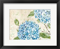 Framed Blue Hydrangeas II