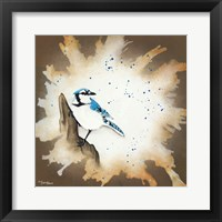 Framed Weathered Friends - Blue Jay